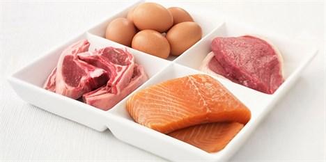 افزایش منطقی قیمت مرغ و ماهی در بازار