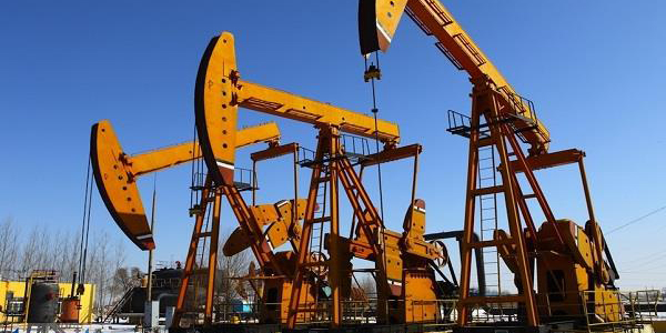 فرش قرمز برای شرکتهای نفتی