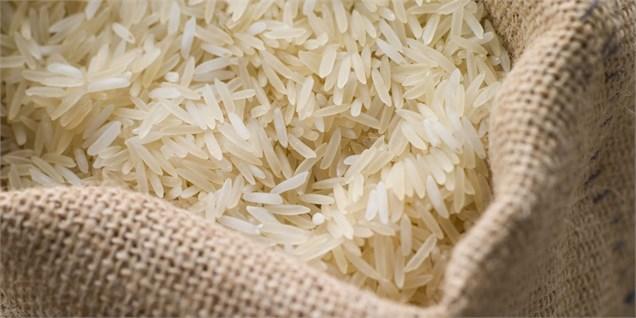 بیم و امیدها در کشت دوم برنج در مازندران