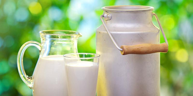 دستور حجتی برای ادامه خرید توافقی شیرخام تا پایان سال۹۶