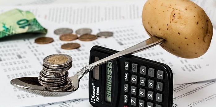 نقش رفتار بودجهای خانوار در توسعه پایدار