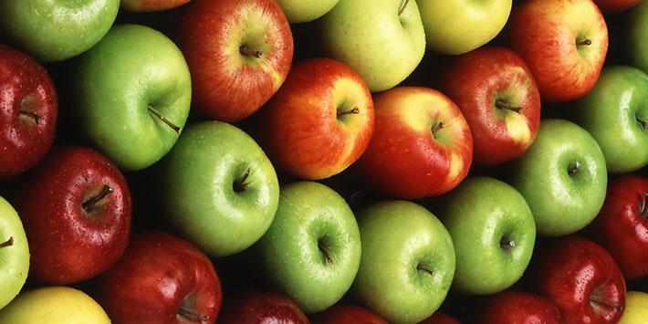 40 هزار تن سیب درختی از باغداران خریداری شد