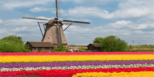 با وجود برابری مساحت، چرا مازندران هلند نشد