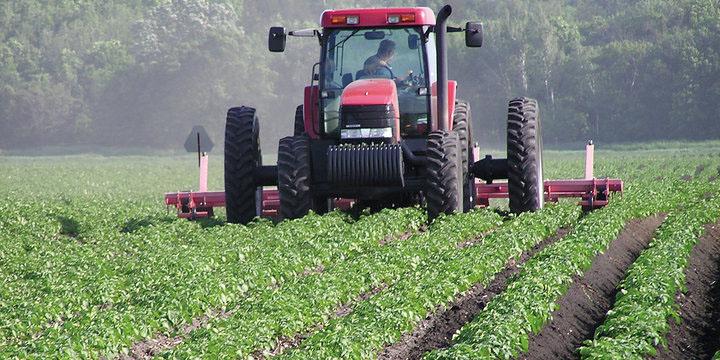 انتقاد کشاورزان از اعتبار خرید تضمینی محصولات کشاورزی در بودجه ۹۷