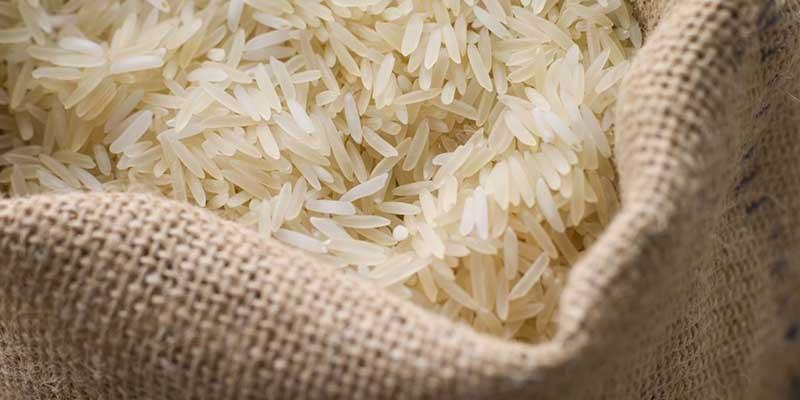 سرنوشت نامعلوم محموله وارداتی ۶۶۰هزار کیسه برنج فاسد از اروگوئه
