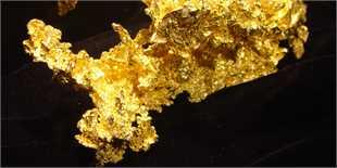 قیمت طلا روی مدار افزایش