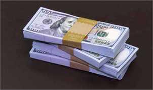مهلت سازمان حمایت به گیرندگان دلار دولتی/ درج قیمتها در سامانه ۱۲۴