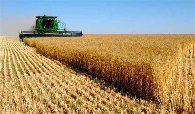 وابستگی بازار محصولات کشاورزی جهان به ایران