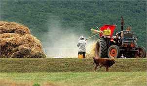 پیش بینی۱۷ هزار میلیارد تومان تسهیلات برای حمایت از بخش کشاورزی