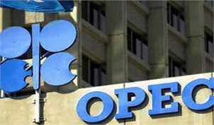 هشدار ایران به اوپک؛ تولید را کاهش ندهید قیمت نفت به ۴۰ دلار سقوط میکند