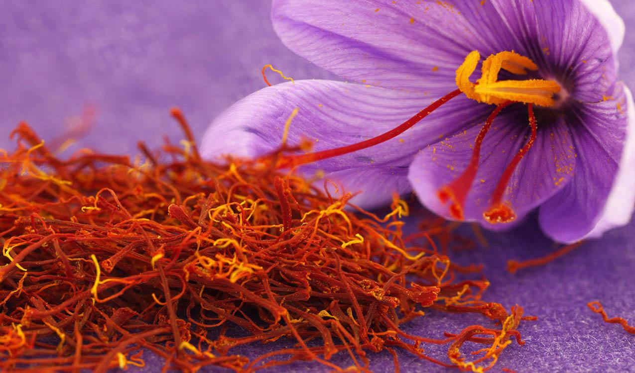 رشد بی سابقه تولید زعفران در افغانستان