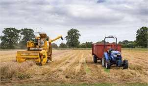 ارسال پیشنویس آییننامه مشوقهای صادراتی کشاورزی به هیأت وزیران