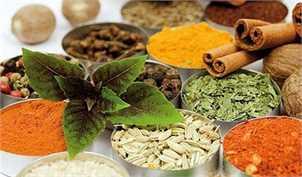 اتحادیه ملی گیاهان دارویی کشور تشکیل میشود