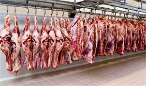 از دپوی ۱۷ هزار تن گوشت در گمرک شوکه شدیم