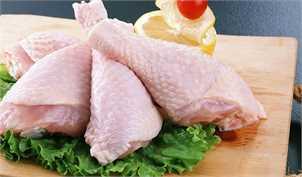 تشکلهای تولیدی به واردات مرغ واکنش نشان دادند