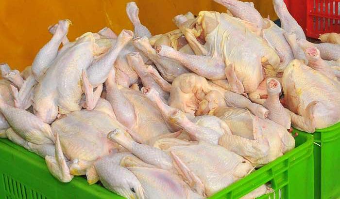 کشف ۷ تن مرغ گرم و توزیع آن میان مردم تهران