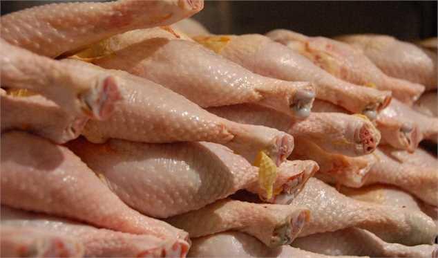 ادامه دار شدن کاهش قیمت مرغ/ ضرر ۱۵۰۰ تا ۲ هزار تومانی مرغداران در هر کیلوگرم مرغ