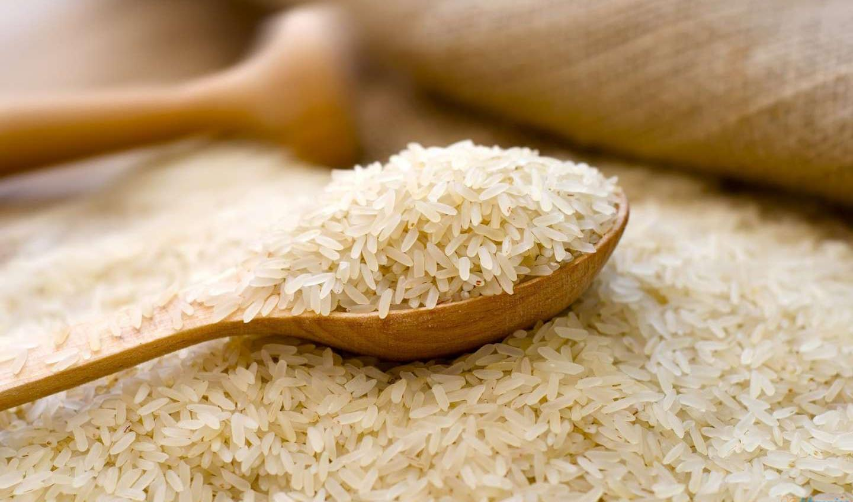برنج با ارز ۴۲۰۰ تومانی وارد میشود