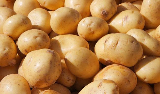 میانگین قیمت سیب زمینی در میدان مرکزی تره بار ۴ هزارتومان شد