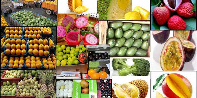 قیمت موز به کیلویی ۱۳ هزار تومان رسید/افزایش ۱۲ درصدی شش قلم میوه در بازار