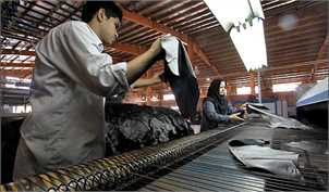 واردات ۶۰ میلیون دلاری چرم در کشور