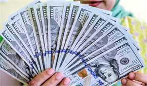 دلالان، نگران سقوط یکباره دلار