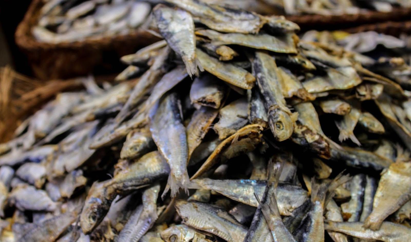 ماهی خشک متو