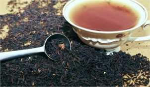 سالانه بیش از ۳۰۰ میلیون دلار چای خارجی وارد میشود