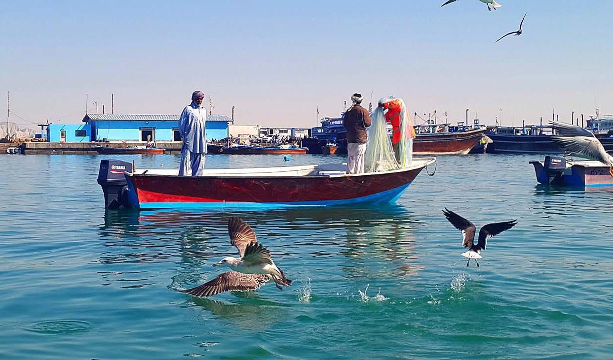 دولت به سهمیه سوخت قایقهای صیادی توجه نکرده است