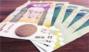 در قانون بودجه برای ثبتنام جاماندگان یارانه نقدی هیچ پیشبینی نشده است