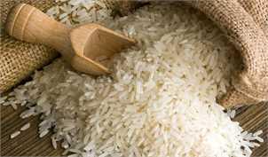 فاصله ۱۳ هزار تومانی قیمت برنج در شمال کشور با تهران