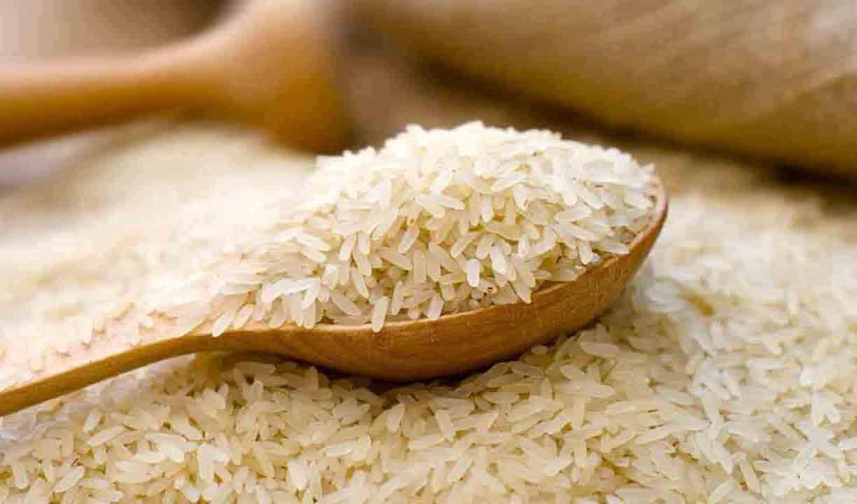 ۸۰ هزار تن برنج در گمرک رسوب شده است