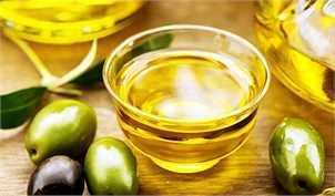 ۲۵ درصد تولید زیتون کنسروی مازاد بر نیاز کشور است/ ضرورت اعمال ممنوعیت واردات روغن زیتون