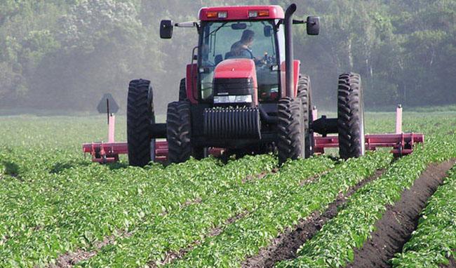 نمای تجارت محصولات کشاورزی تا پایان پاییز