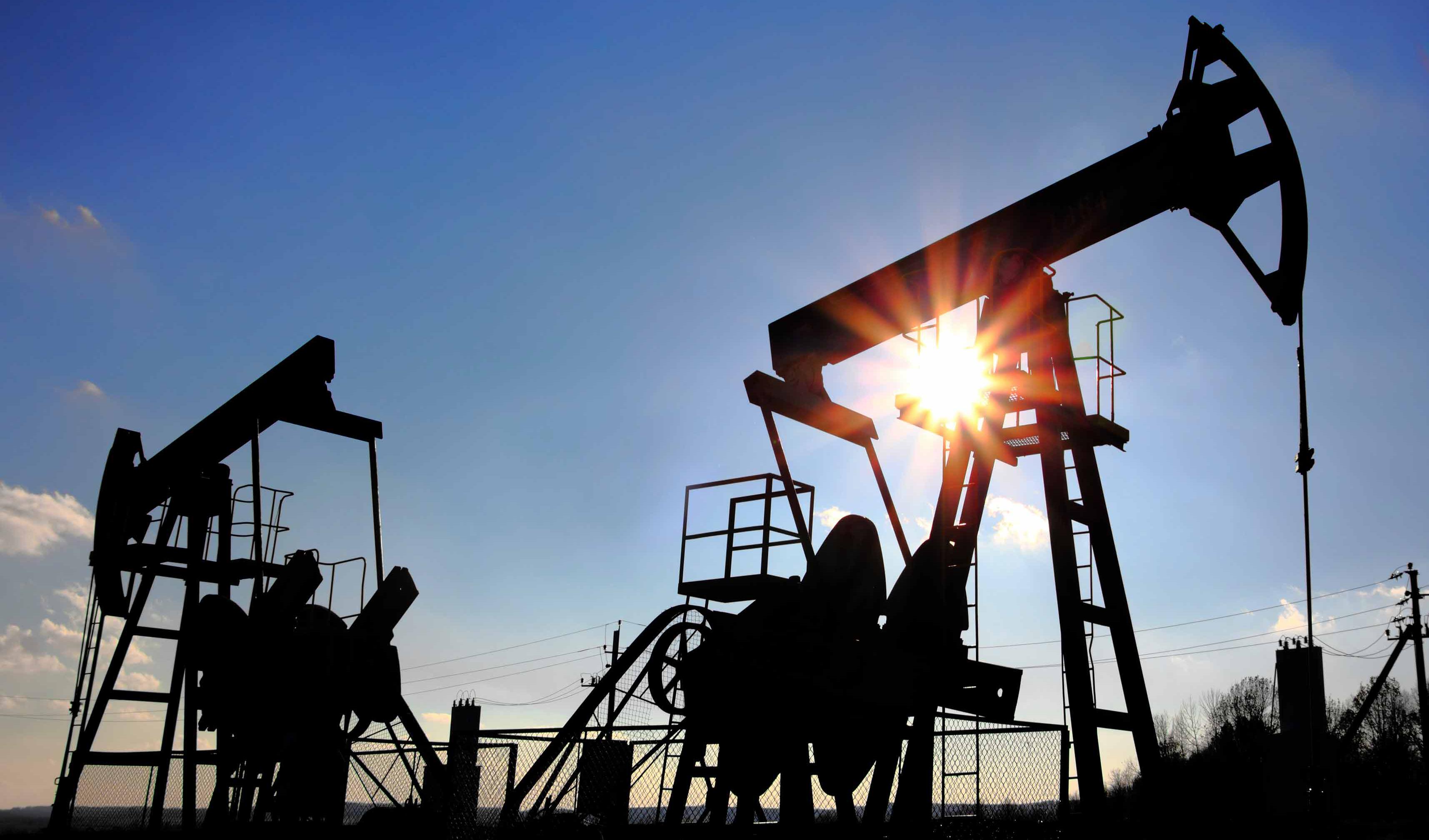 نفت از کاهش قیمت دست برداشت