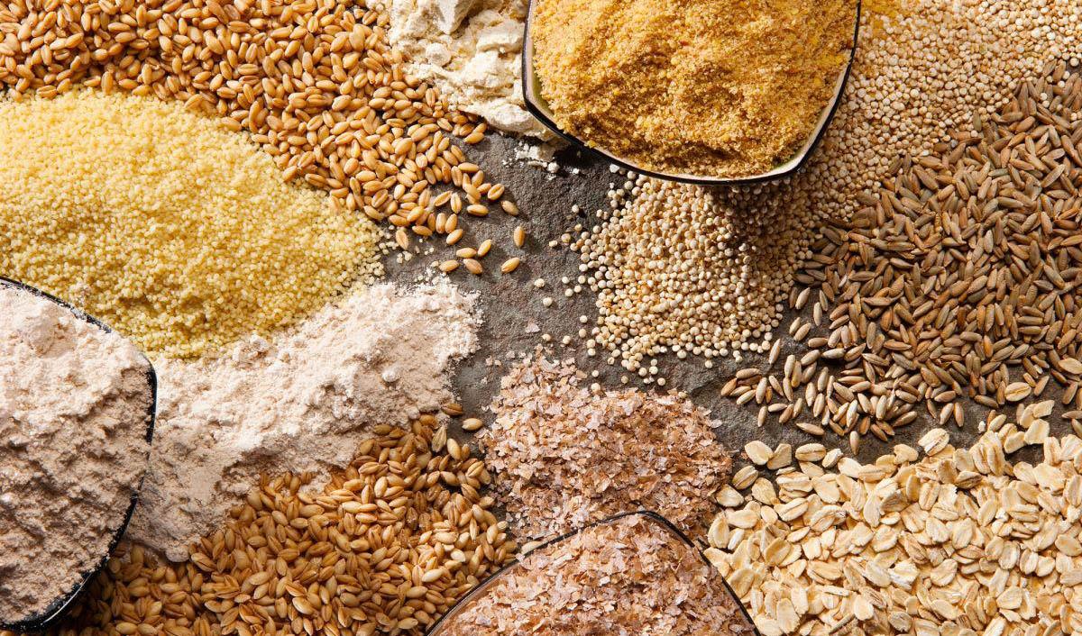 پیش بینی OECD و FAO از وضعیت بخش غلات ایران/ تولید غلات ۲.۴ درصد رشد میکند/ راندمان گندم رشد ۲.۷ درصدی دارد