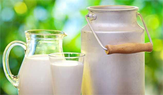 خرید حمایتی شیر خام مازاد دامداران تصویب شد