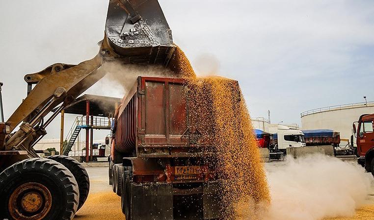ابهامات جدی در مبدا واردات غلات/ حذف گواهی مبدا امنیت غذایی کشور را به خطر میاندازد