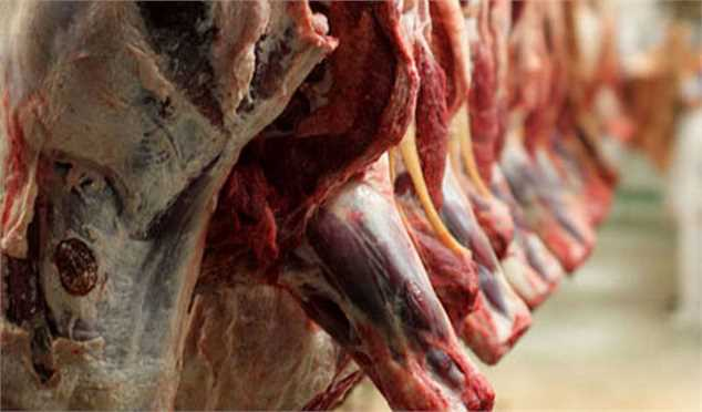 اعیاد و عزاداریها علت گرانی دام و گوشت نیست؛ پای دلالان درمیان است