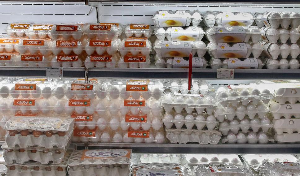 حذف عوارض صادرات تخم مرغ از اول شهریورماه