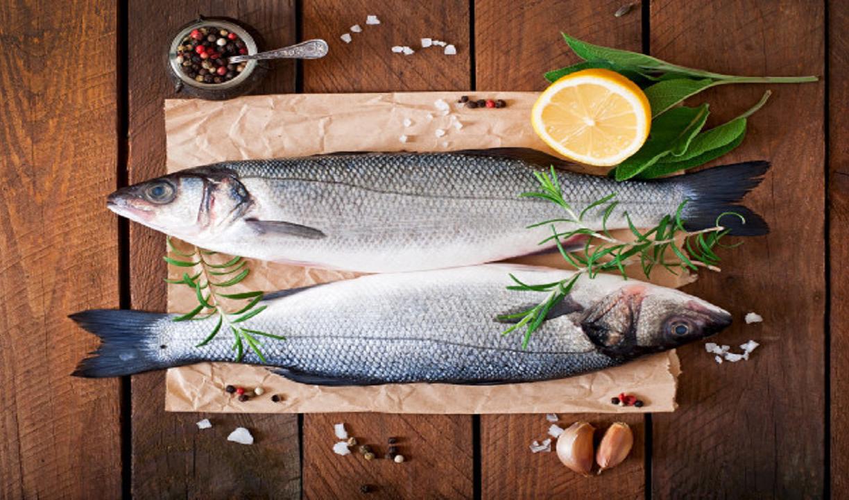تولید ماهی قزل آلا به ۱۴۰ هزار تن میرسد؛ قیمت هر کیلو قزل آلا ۲۶ هزار تومان