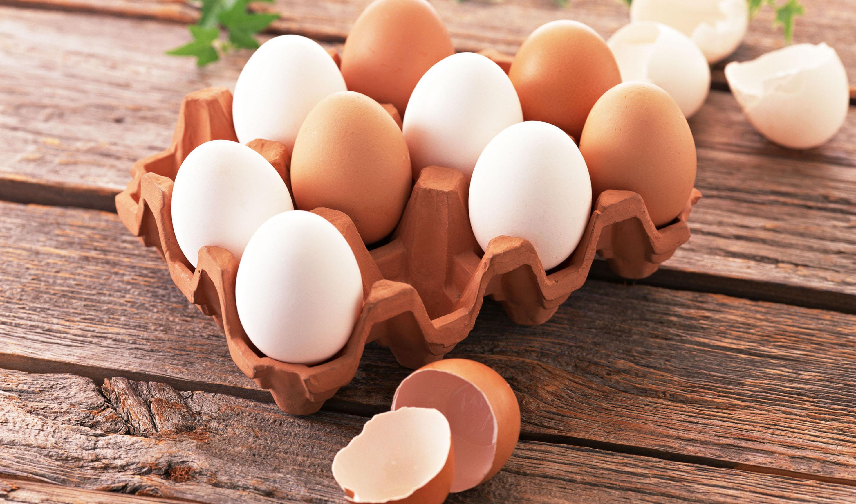 قیمت تخممرغ بال درآورد