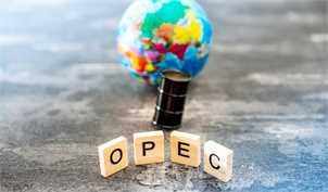 قیمت سبد نفتی اوپک از ۴۱ دلار گذشت