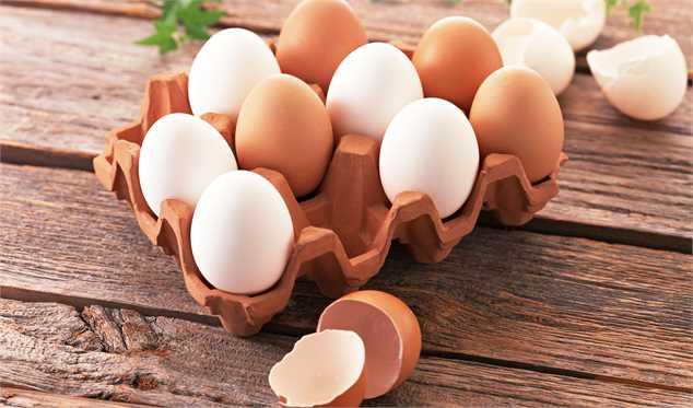 عرضه تخم مرغ بصورت بسته بندی شده اجباری می شود