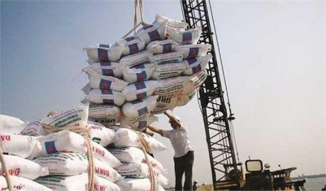 برنج وارداتی نهایتا ۱۳ هزار تومان باید باشد/ وارد کنندگان حرص واردات دارند/ انبارها مملو از برنج خارجی است