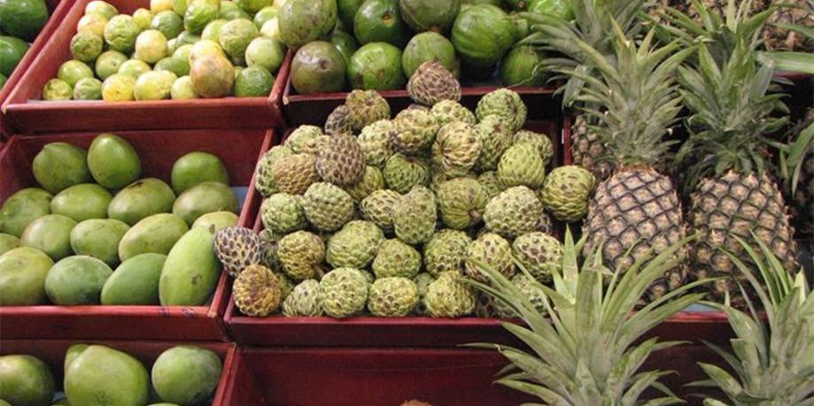 ماجرای واردات میوه چه بود؟/ میوههای ورود موقت سر از بازار داخل در آورد!