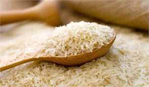 آغاز عرضه ۳۰ هزار تن برنج از محل ذخایر