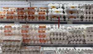 تخم مرغ در بازار شانهای ۳۰ هزارتومان شد