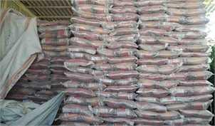 دردسرهای ممنوعیت واردات برنج/ ۵۰ میلیون نفر توان خرید برنج ایرانی را ندارند