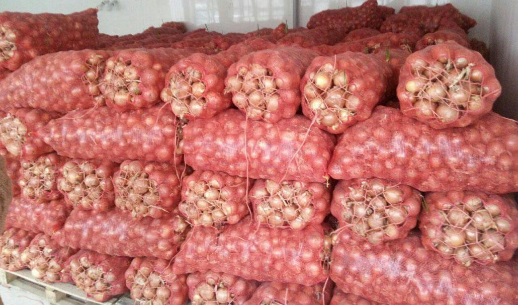 قیمت پیاز با عرضه تولیدات جدید به بازار بهزودی کاهش مییابد